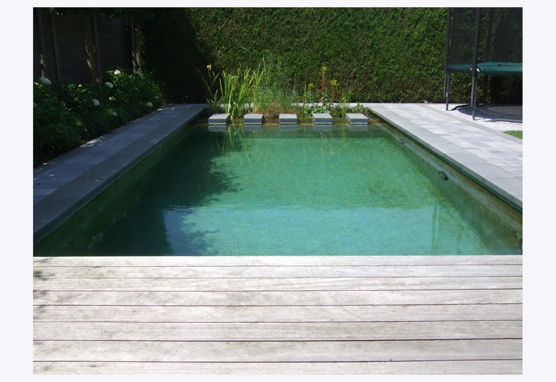 Plaatsen zwemvijver en terras in Deerlijk